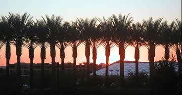 Devcon Sunset