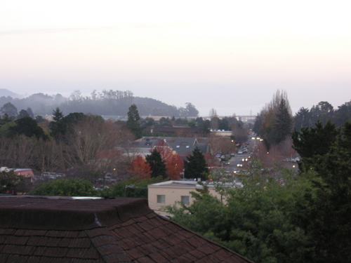 Mill Valley flats from a little hill I walk